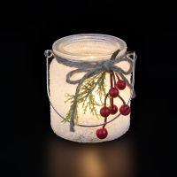 Christmas Glass with red Berries