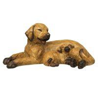 Hund mit Welpe braun - liegend